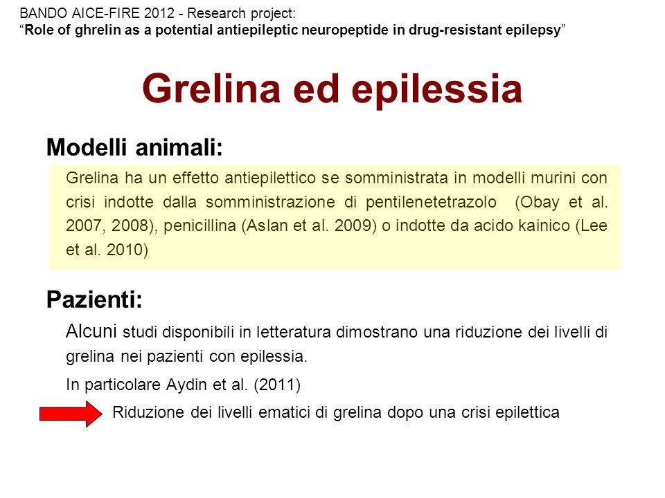 Grelina ed epilessia Modelli animali: Grelina ha un effetto antiepilettico se somministrata in modelli murini con crisi indotte dalla somministrazione