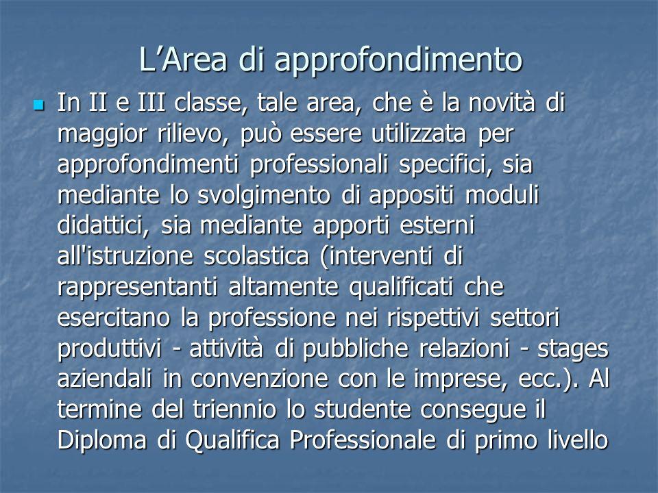 LArea di approfondimento In II e III classe, tale area, che è la novità di maggior rilievo, può essere utilizzata per approfondimenti professionali sp