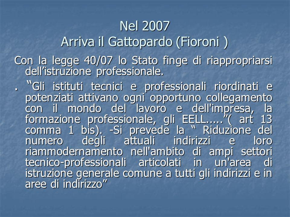 Nel 2007 Arriva il Gattopardo (Fioroni ) Con la legge 40/07 lo Stato finge di riappropriarsi dellistruzione professionale.. Gli istituti tecnici e pro