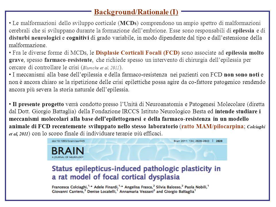 Le malformazioni dello sviluppo corticale (MCDs) comprendono un ampio spettro di malformazioni cerebrali che si sviluppano durante la formazione delle