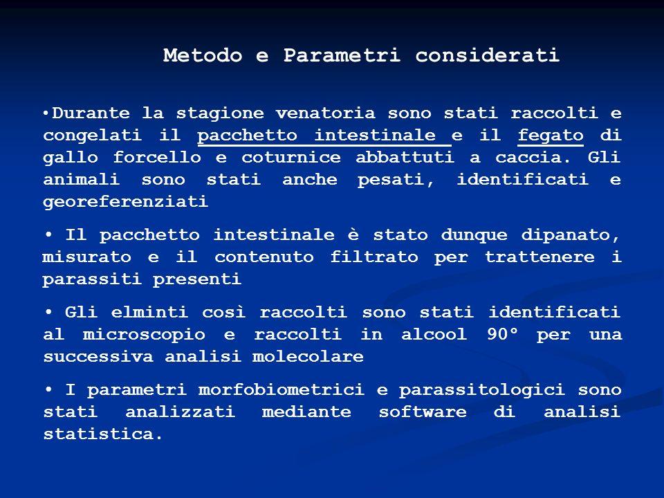 Monitoraggio in Provincia di Lecco Gallo forcello Tetrao tetrix 1999* * 200020012002*2003 Campelli 7159 Grigne Or.