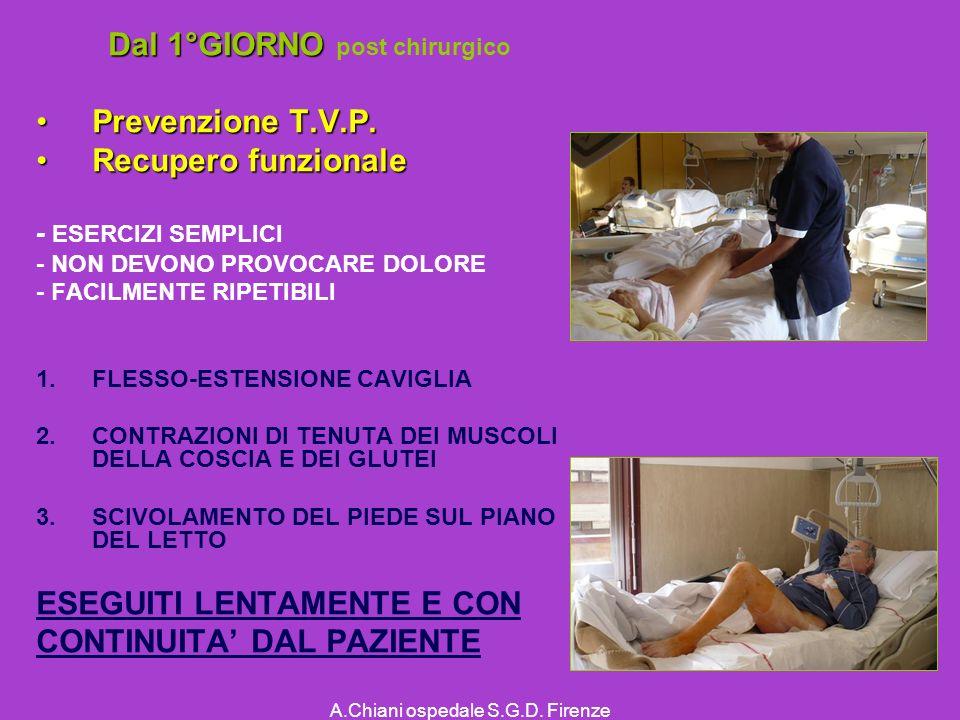 A.Chiani ospedale S.G.D.