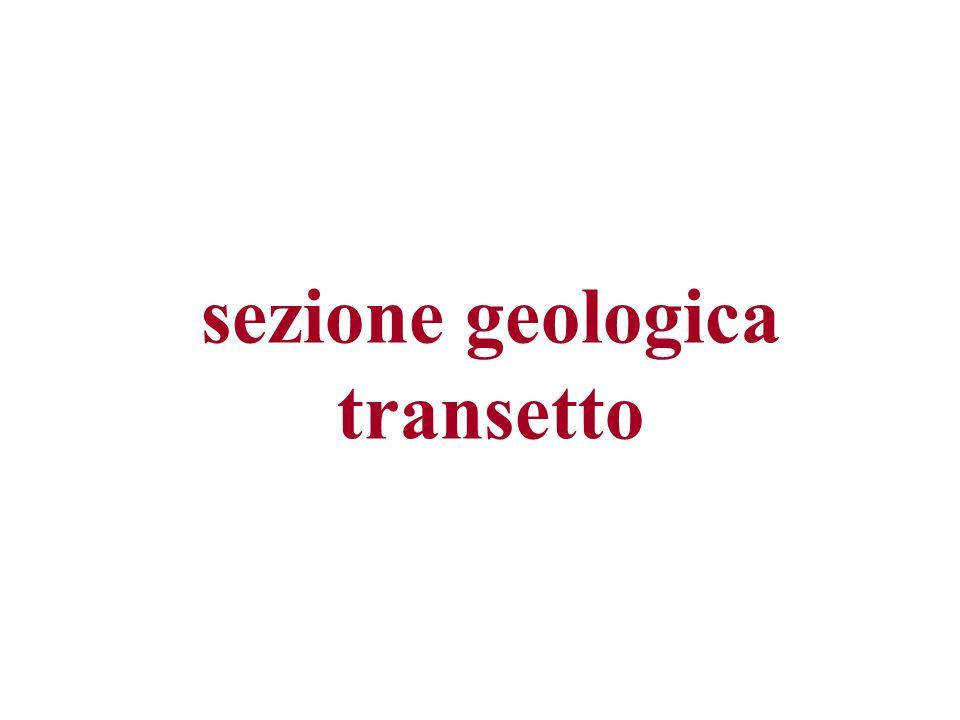 sezione geologica transetto