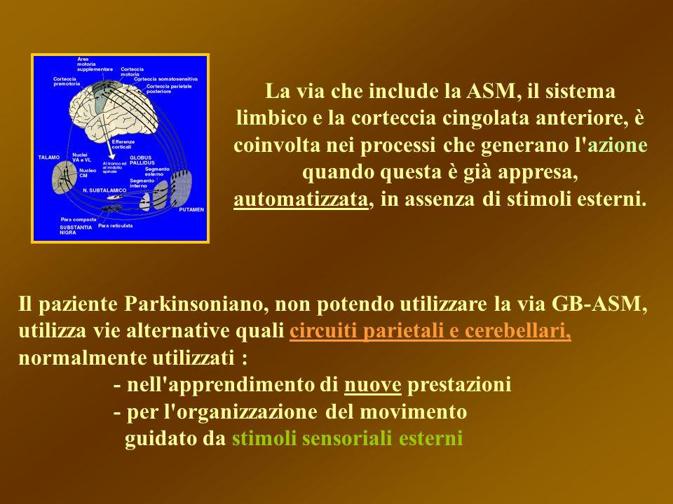 Il paziente Parkinsoniano, non potendo utilizzare la via GB-ASM, utilizza vie alternative quali circuiti parietali e cerebellari, normalmente utilizza