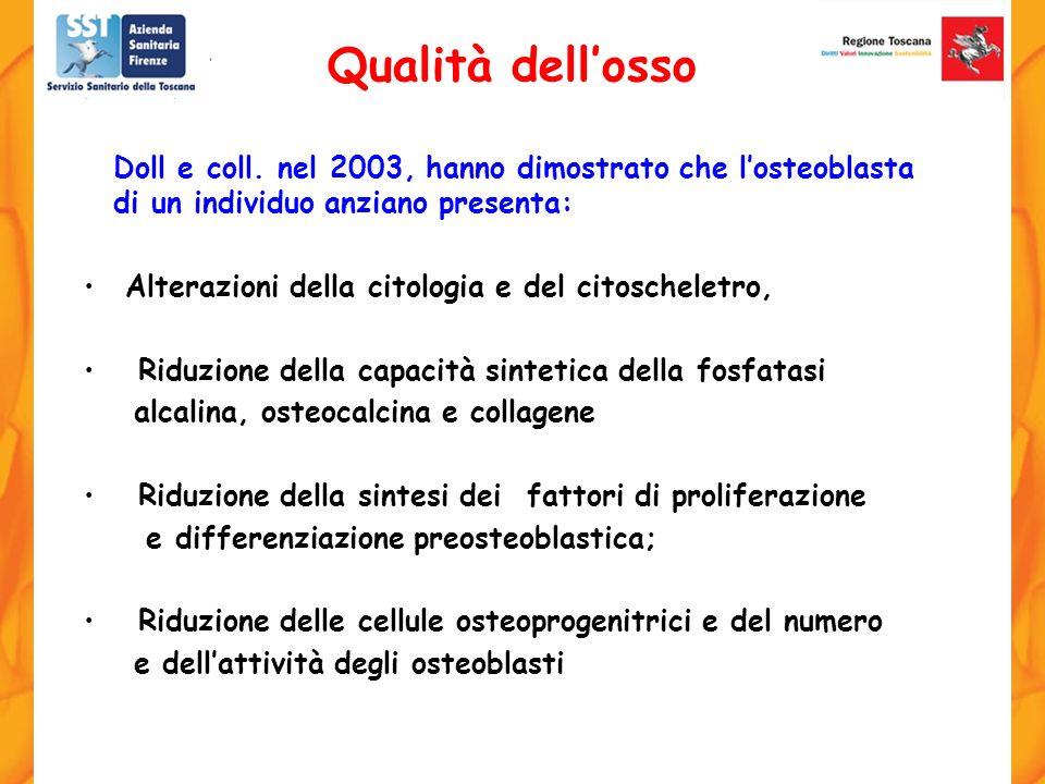 Doll e coll. nel 2003, hanno dimostrato che losteoblasta di un individuo anziano presenta: Alterazioni della citologia e del citoscheletro, Riduzione