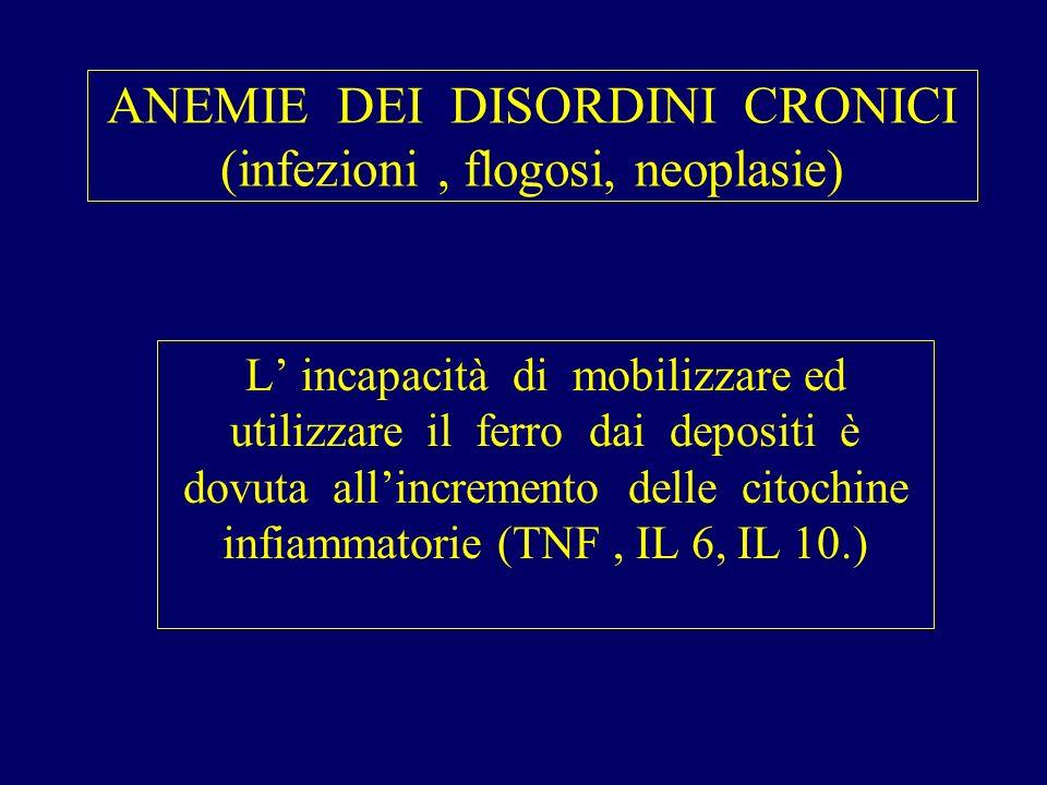 ANEMIE DEI DISORDINI CRONICI (infezioni, flogosi, neoplasie) L incapacità di mobilizzare ed utilizzare il ferro dai depositi è dovuta allincremento delle citochine infiammatorie (TNF, IL 6, IL 10.)
