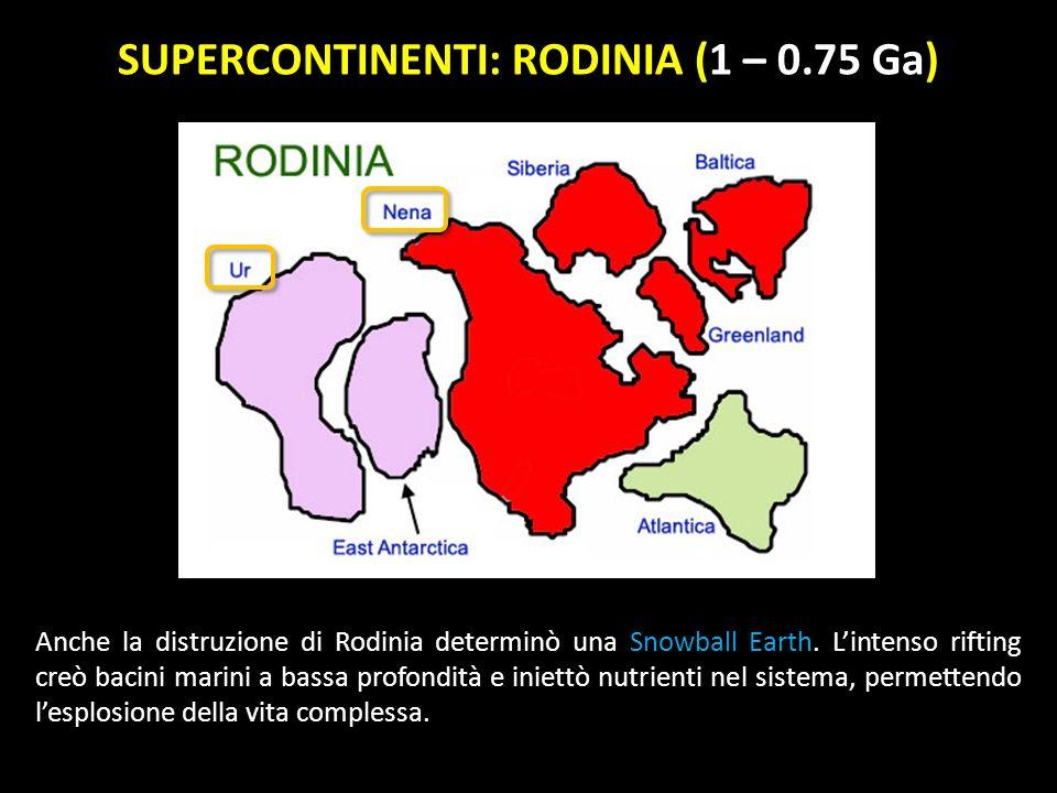 SUPERCONTINENTI: RODINIA (1 – 0.75 Ga) Anche la distruzione di Rodinia determinò una Snowball Earth.