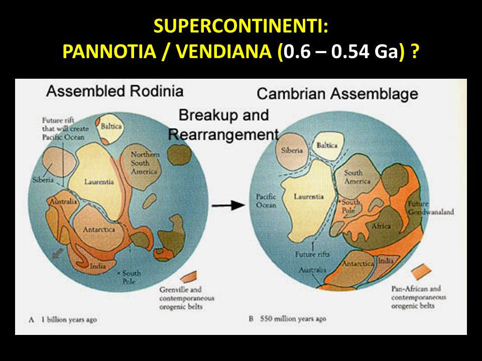 SUPERCONTINENTI: PANNOTIA / VENDIANA (0.6 – 0.54 Ga) ?