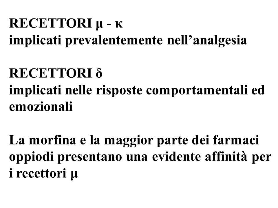 RECETTORI μ - κ implicati prevalentemente nellanalgesia RECETTORI δ implicati nelle risposte comportamentali ed emozionali La morfina e la maggior par