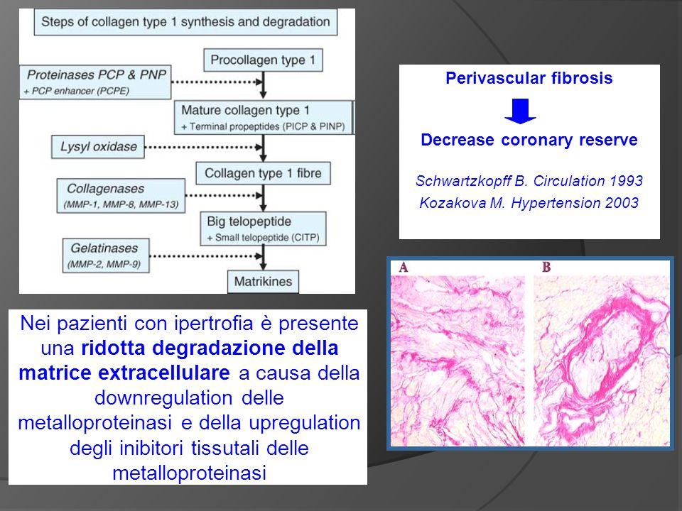Nei pazienti con ipertrofia è presente una ridotta degradazione della matrice extracellulare a causa della downregulation delle metalloproteinasi e della upregulation degli inibitori tissutali delle metalloproteinasi Perivascular fibrosis Decrease coronary reserve Schwartzkopff B.