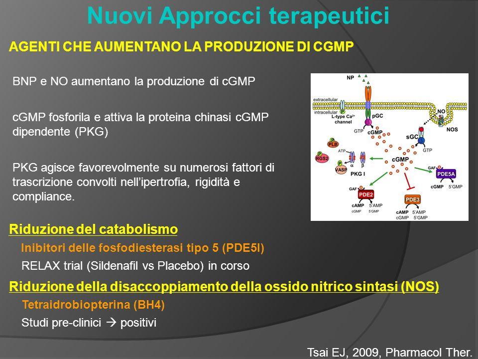 Nuovi Approcci terapeutici AGENTI CHE AUMENTANO LA PRODUZIONE DI CGMP BNP e NO aumentano la produzione di cGMP cGMP fosforila e attiva la proteina chinasi cGMP dipendente (PKG) PKG agisce favorevolmente su numerosi fattori di trascrizione convolti nellipertrofia, rigidità e compliance.