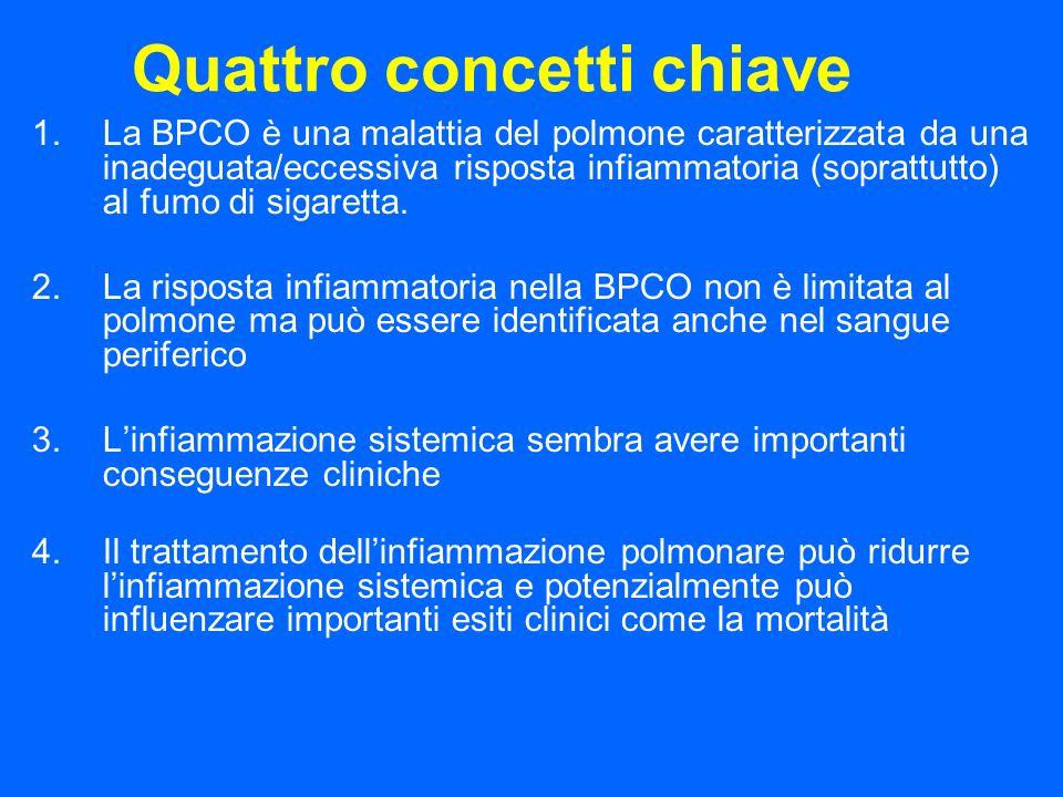 Quattro concetti chiave 1.La BPCO è una malattia del polmone caratterizzata da una inadeguata/eccessiva risposta infiammatoria (soprattutto) al fumo d