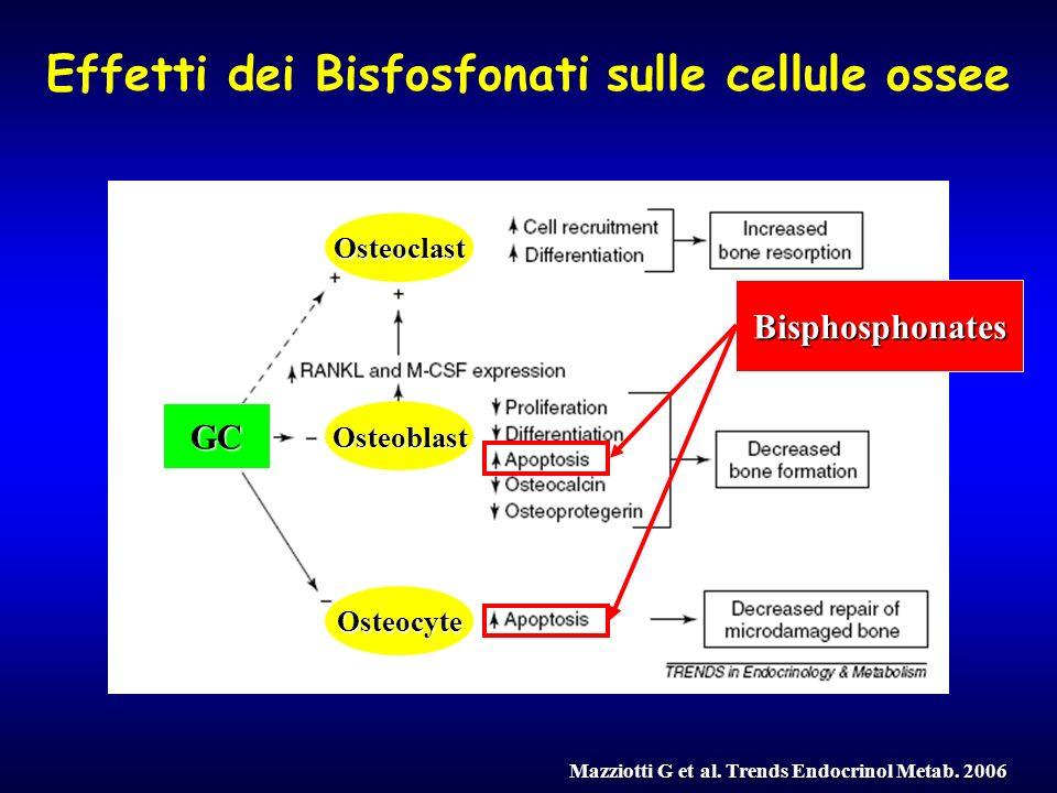 Osteoblast Osteocyte Osteoclast GC Effetti dei Bisfosfonati sulle cellule ossee Mazziotti G et al. Trends Endocrinol Metab. 2006 Bisphosphonates