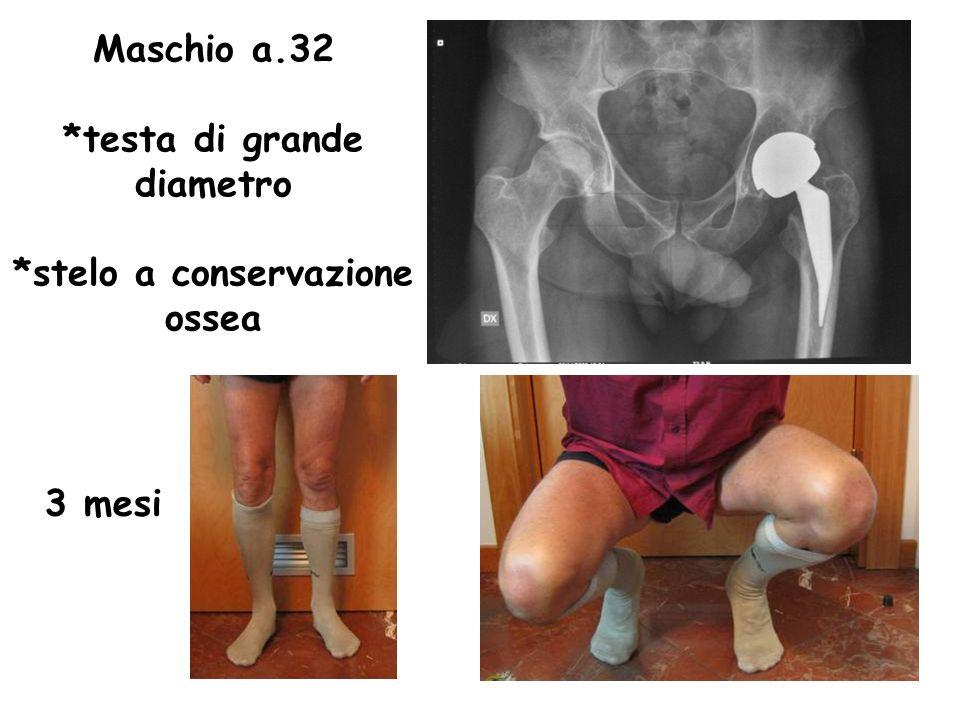 Maschio a.32 *testa di grande diametro *stelo a conservazione ossea 3 mesi
