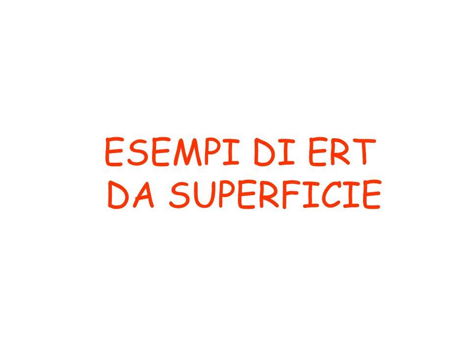 ESEMPI DI ERT DA SUPERFICIE