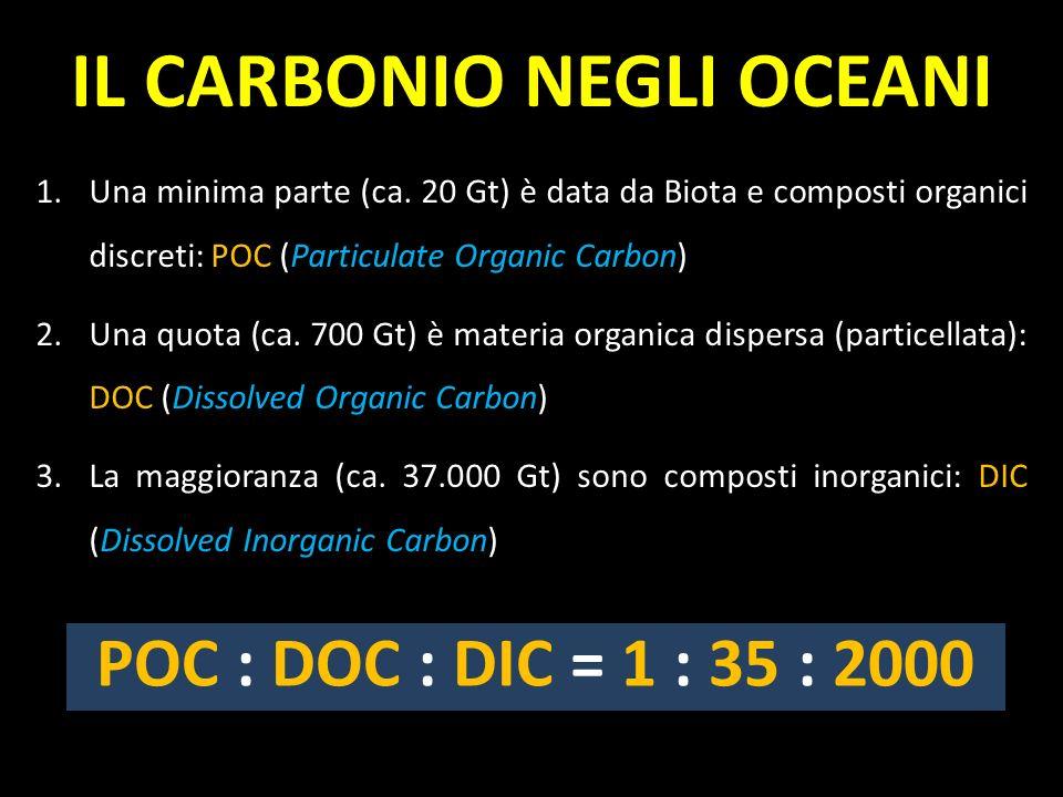 1.Una minima parte (ca. 20 Gt) è data da Biota e composti organici discreti: POC (Particulate Organic Carbon) 2.Una quota (ca. 700 Gt) è materia organ