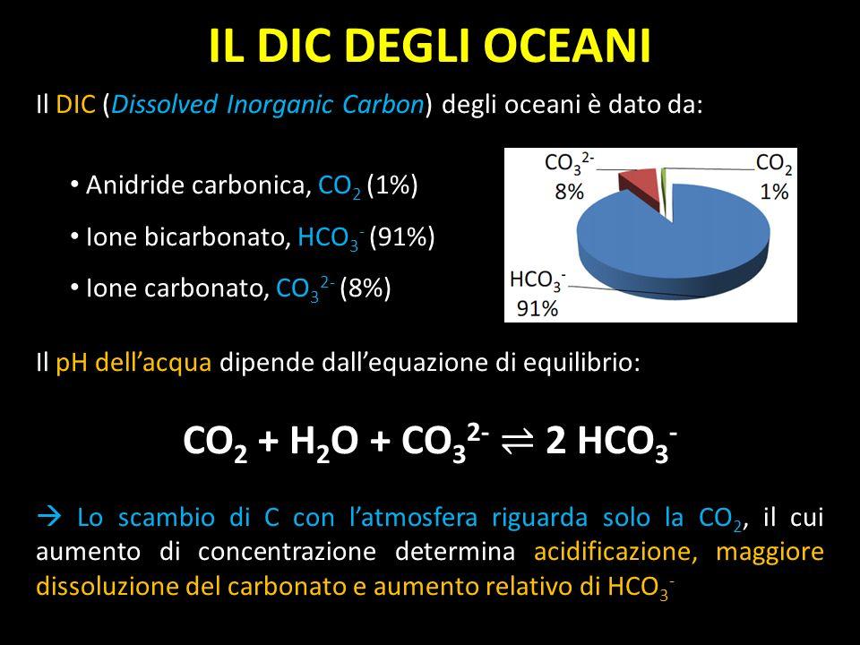 Il DIC (Dissolved Inorganic Carbon) degli oceani è dato da: Anidride carbonica, CO 2 (1%) Ione bicarbonato, HCO 3 - (91%) Ione carbonato, CO 3 2- (8%)