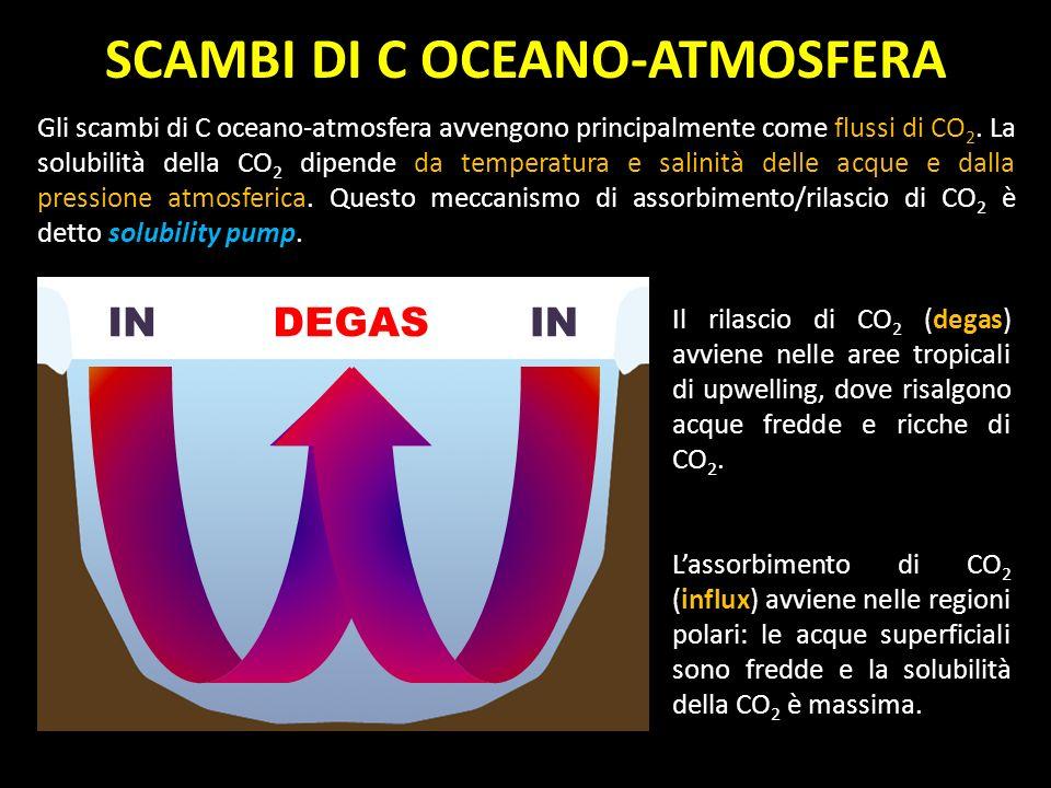 SCAMBI DI C OCEANO-ATMOSFERA Gli scambi di C oceano-atmosfera avvengono principalmente come flussi di CO 2. La solubilità della CO 2 dipende da temper