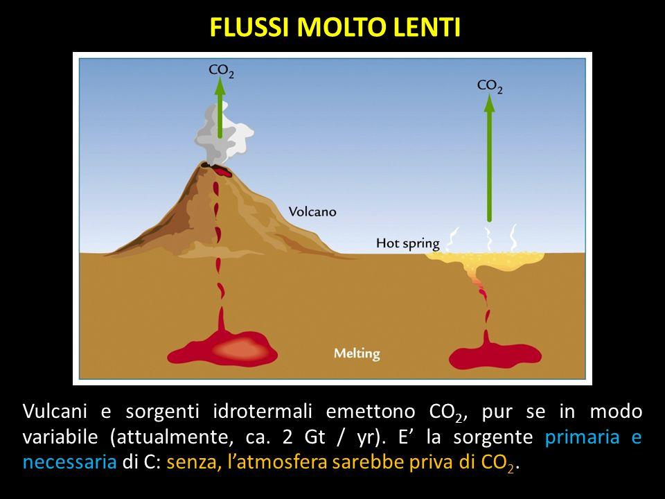 FLUSSI MOLTO LENTI Vulcani e sorgenti idrotermali emettono CO 2, pur se in modo variabile (attualmente, ca. 2 Gt / yr). E la sorgente primaria e neces