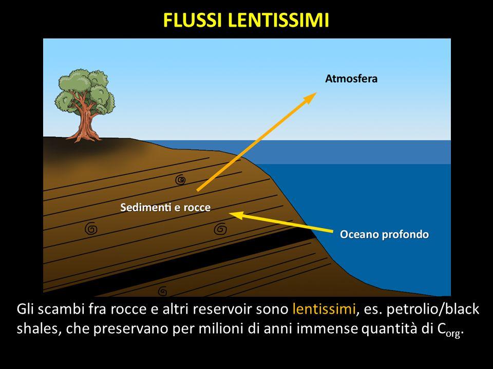Gli scambi fra rocce e altri reservoir sono lentissimi, es. petrolio/black shales, che preservano per milioni di anni immense quantità di C org. FLUSS