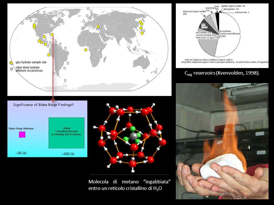 C org reservoirs (Kvenvolden, 1998). Molecola di metano ingabbiata entro un reticolo cristallino di H 2 O