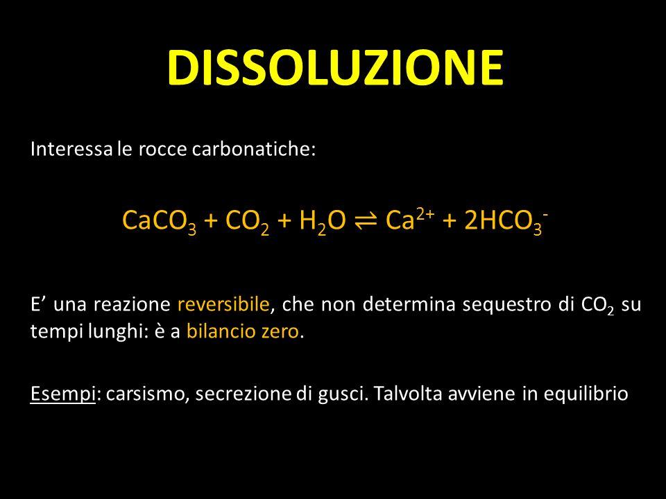 DISSOLUZIONE Interessa le rocce carbonatiche: CaCO 3 + CO 2 + H 2 O Ca 2+ + 2HCO 3 - E una reazione reversibile, che non determina sequestro di CO 2 s