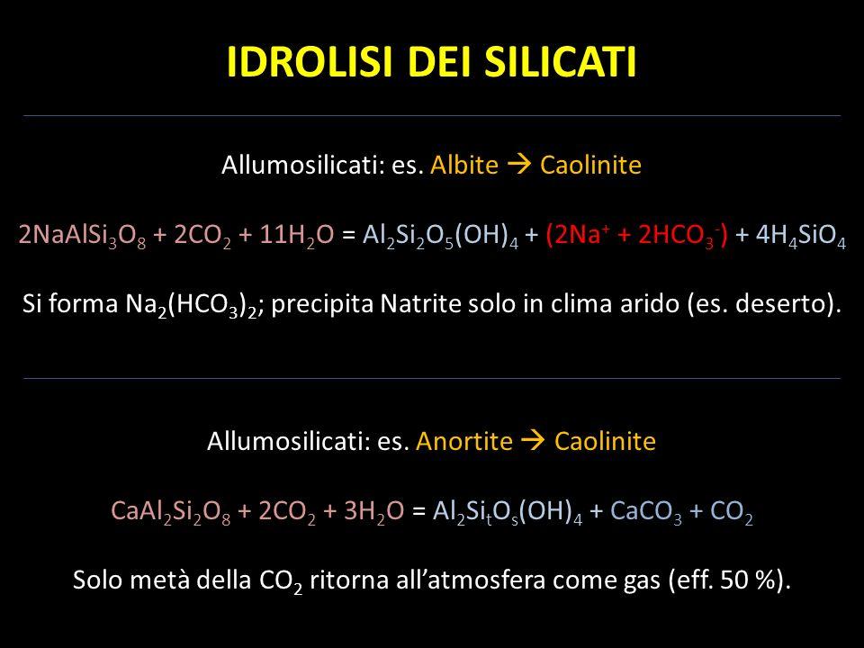 IDROLISI DEI SILICATI Allumosilicati: es. Albite Caolinite 2NaAlSi 3 O 8 + 2CO 2 + 11H 2 O = Al 2 Si 2 O 5 (OH) 4 + (2Na + + 2HCO 3 - ) + 4H 4 SiO 4 S