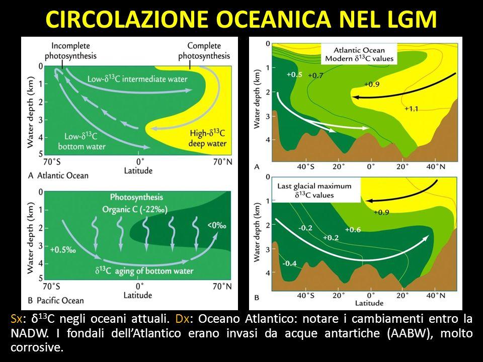 Sx: δ 13 C negli oceani attuali. Dx: Oceano Atlantico: notare i cambiamenti entro la NADW. I fondali dellAtlantico erano invasi da acque antartiche (A