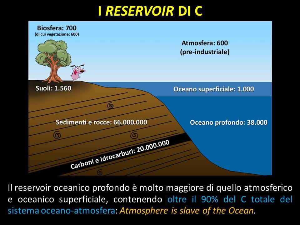 I RESERVOIR DI C Il reservoir oceanico profondo è molto maggiore di quello atmosferico e oceanico superficiale, contenendo oltre il 90% del C totale d