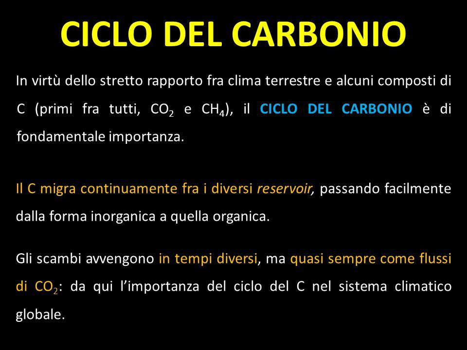 CO 2 + H 2 O + luce = CH 2 O + O 2 CH 2 O + O 2 = CO 2 + H 2 O + energia CARBONIO E BIOTA Il Carbonio è essenziale nel metabolismo di vegetali e animali, che lo utilizzano nella fotosintesi e nella respirazione, rispettivamente: Fotosintesi e respirazione avvengono in equilibrio, e determinano quindi un significativo frazionamento isotopico.