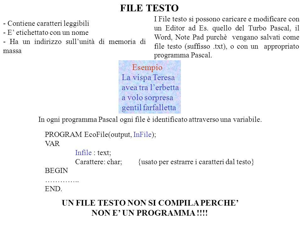 FILE TESTO - Contiene caratteri leggibili - E etichettato con un nome - Ha un indirizzo sullunità di memoria di massa I File testo si possono caricare