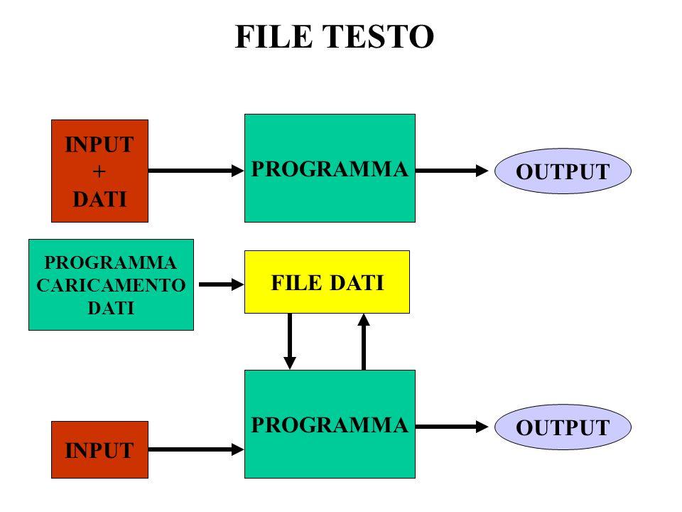 FILE TESTO - Contiene caratteri leggibili - E etichettato con un nome - Ha un indirizzo sullunità di memoria di massa I File testo si possono caricare e modificare con un Editor ad Es.