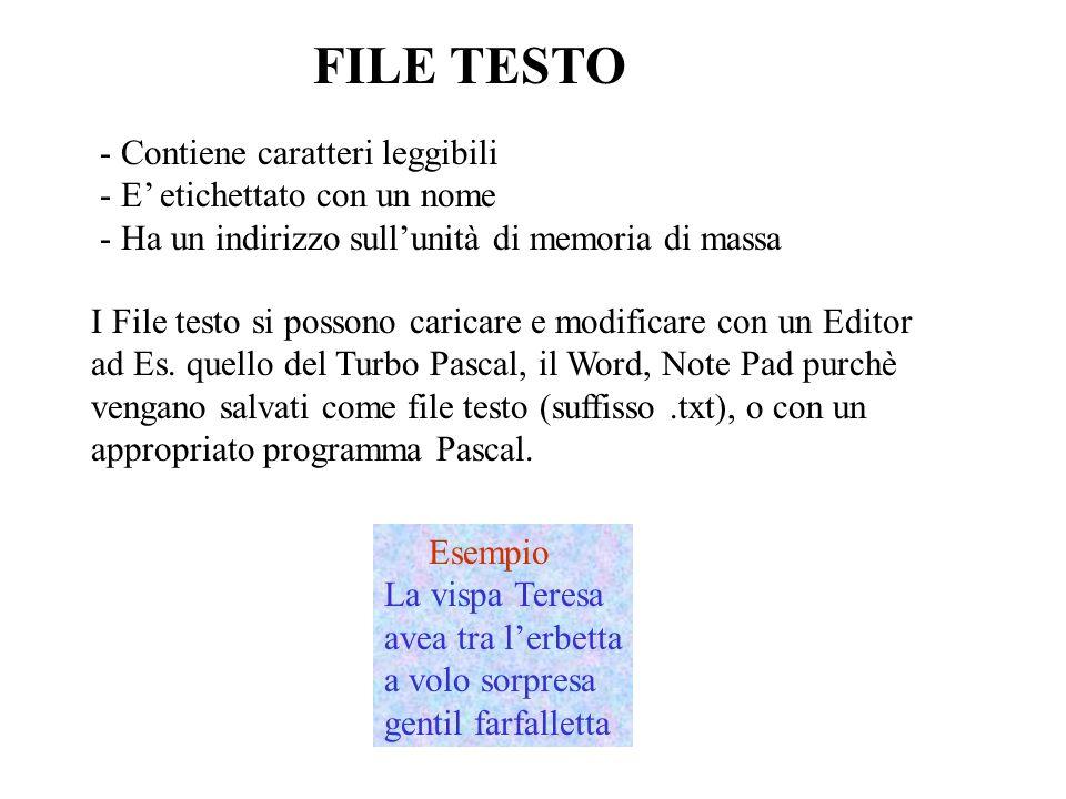 FILE TESTO In ogni programma Pascal ogni file è identificato attraverso una variabile.