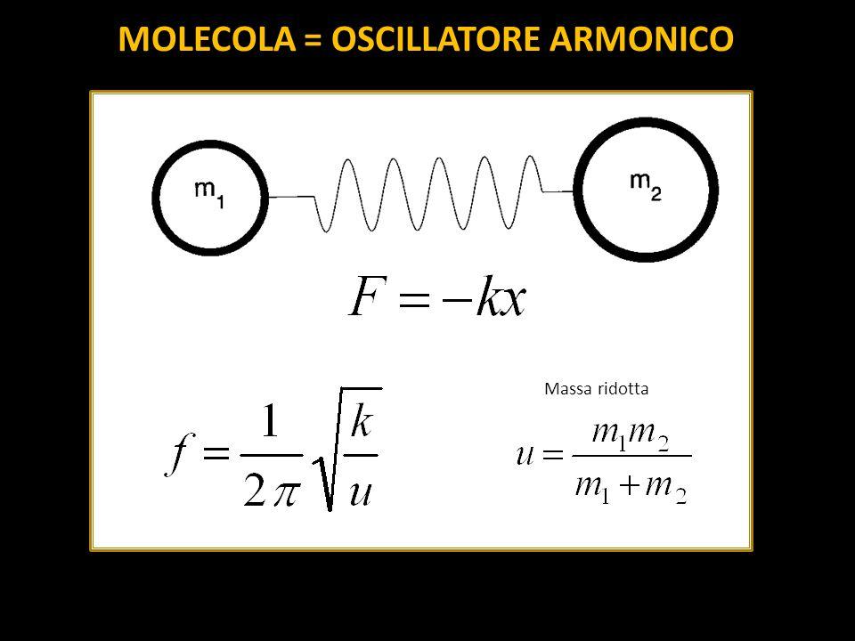 Massa ridotta MOLECOLA = OSCILLATORE ARMONICO