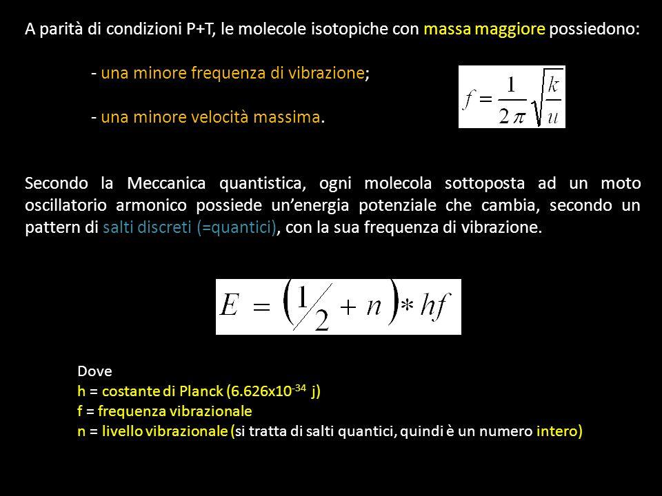 A parità di condizioni P+T, le molecole isotopiche con massa maggiore possiedono: - una minore frequenza di vibrazione; - una minore velocità massima.
