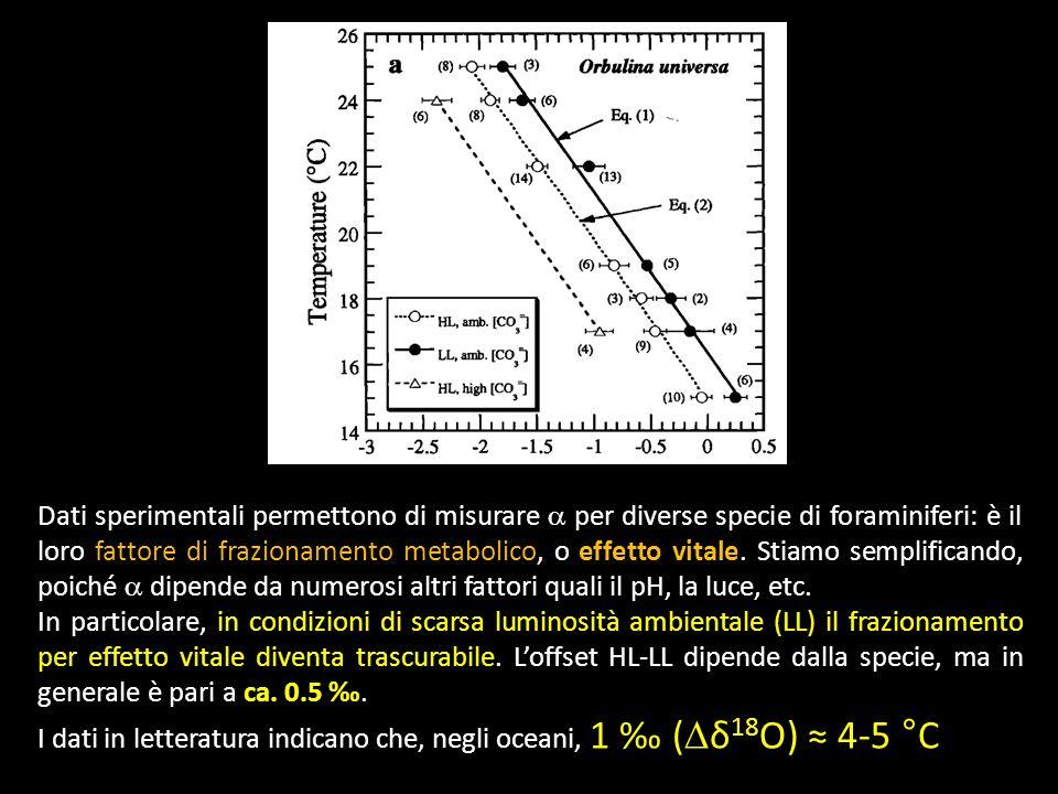 Dati sperimentali permettono di misurare per diverse specie di foraminiferi: è il loro fattore di frazionamento metabolico, o effetto vitale. Stiamo s