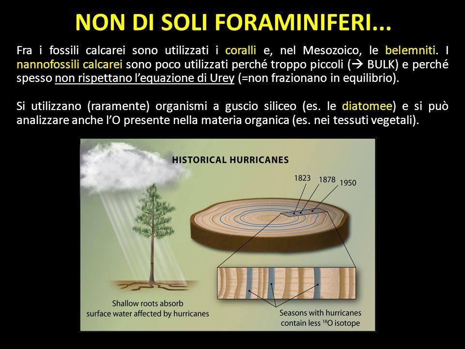 NON DI SOLI FORAMINIFERI... Fra i fossili calcarei sono utilizzati i coralli e, nel Mesozoico, le belemniti. I nannofossili calcarei sono poco utilizz