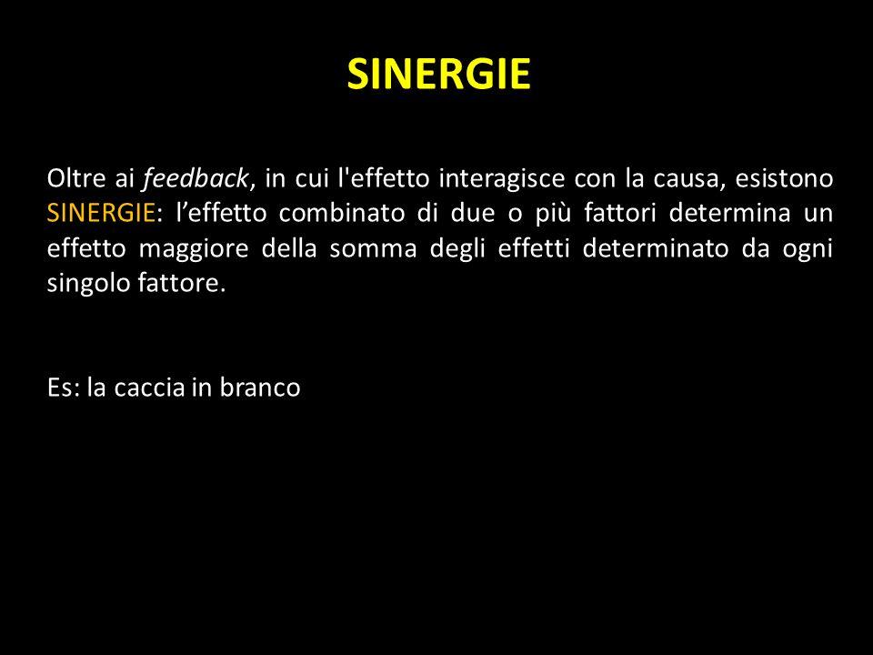 SINERGIE Oltre ai feedback, in cui l'effetto interagisce con la causa, esistono SINERGIE: leffetto combinato di due o più fattori determina un effetto