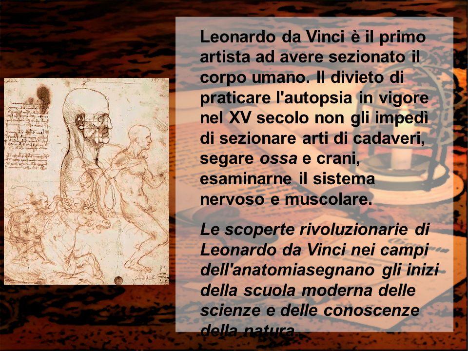 Leonardo da Vinci è il primo artista ad avere sezionato il corpo umano. Il divieto di praticare l'autopsia in vigore nel XV secolo non gli impedì di s