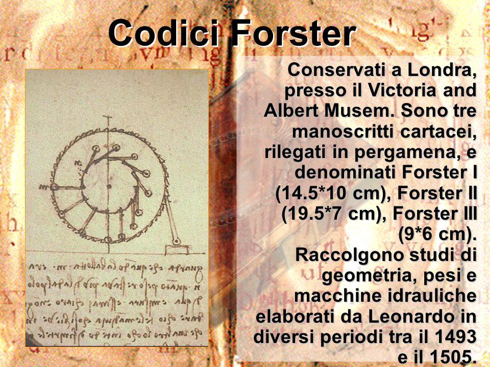 Codici Forster Conservati a Londra, presso il Victoria and Albert Musem. Sono tre manoscritti cartacei, rilegati in pergamena, e denominati Forster I
