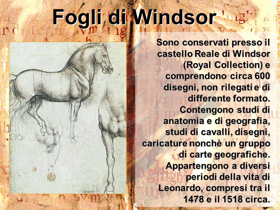 Fogli di Windsor Sono conservati presso il castello Reale di Windsor (Royal Collection) e comprendono circa 600 disegni, non rilegati e di differente