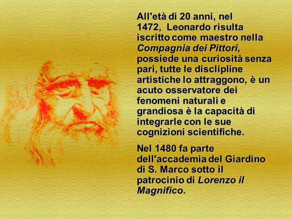 All'età di 20 anni, nel 1472, Leonardo risulta iscritto come maestro nella Compagnia dei Pittori, possiede una curiosità senza pari, tutte le disclipl