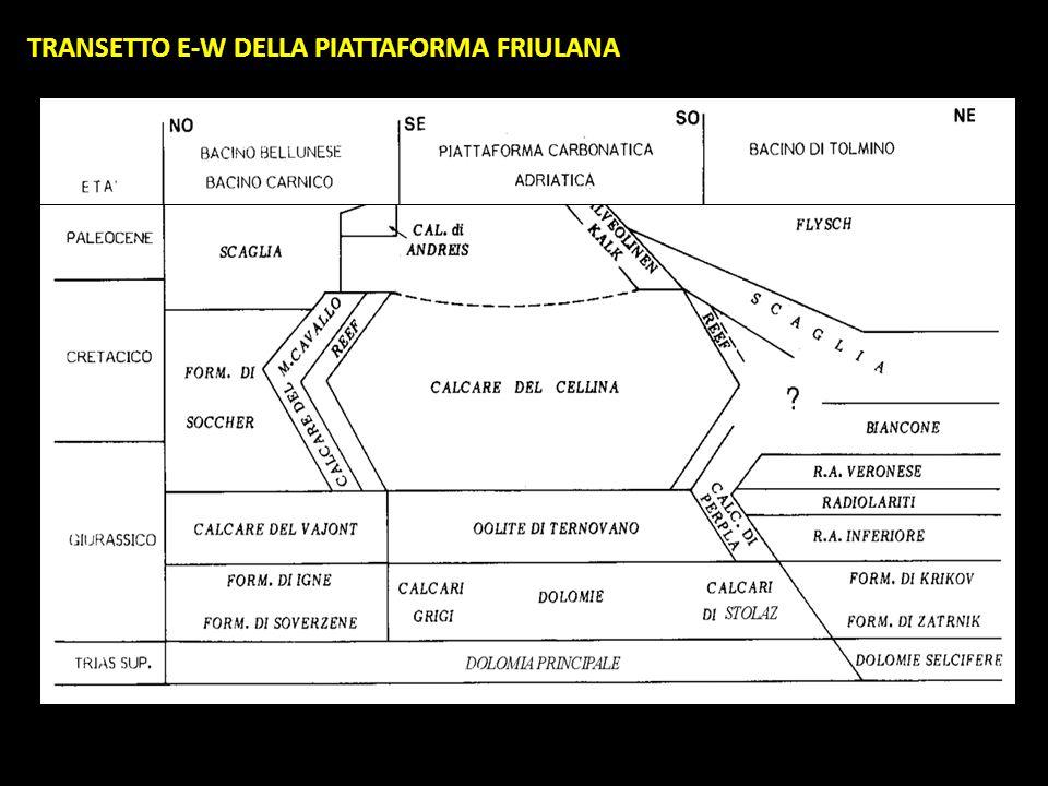 TRANSETTO E-W DELLA PIATTAFORMA FRIULANA