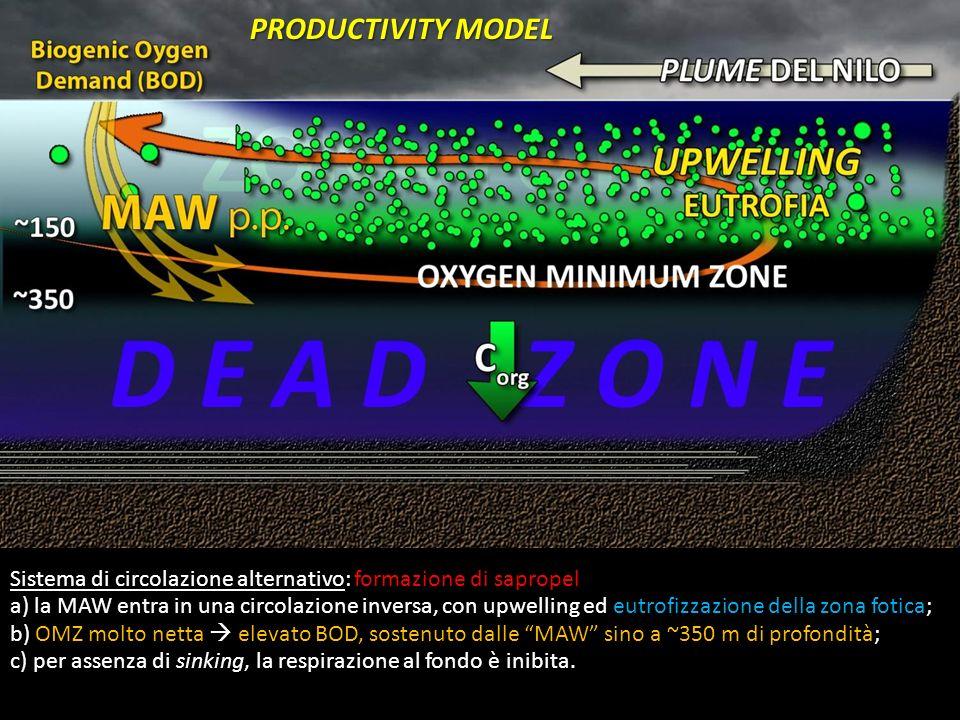 Sistema di circolazione alternativo: formazione di sapropel a) la MAW entra in una circolazione inversa, con upwelling ed eutrofizzazione della zona f