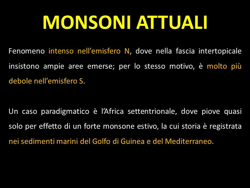 MONSONI ATTUALI Lintensità del fenomeno monsonico viene misurata in termini di mm/pioggia yr -1.