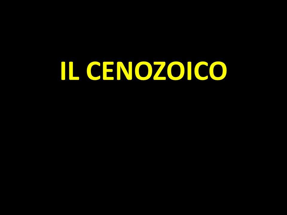 IL CENOZOICO