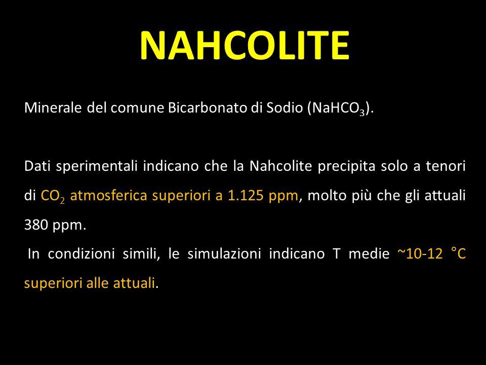 NAHCOLITE Minerale del comune Bicarbonato di Sodio (NaHCO 3 ). Dati sperimentali indicano che la Nahcolite precipita solo a tenori di CO 2 atmosferica