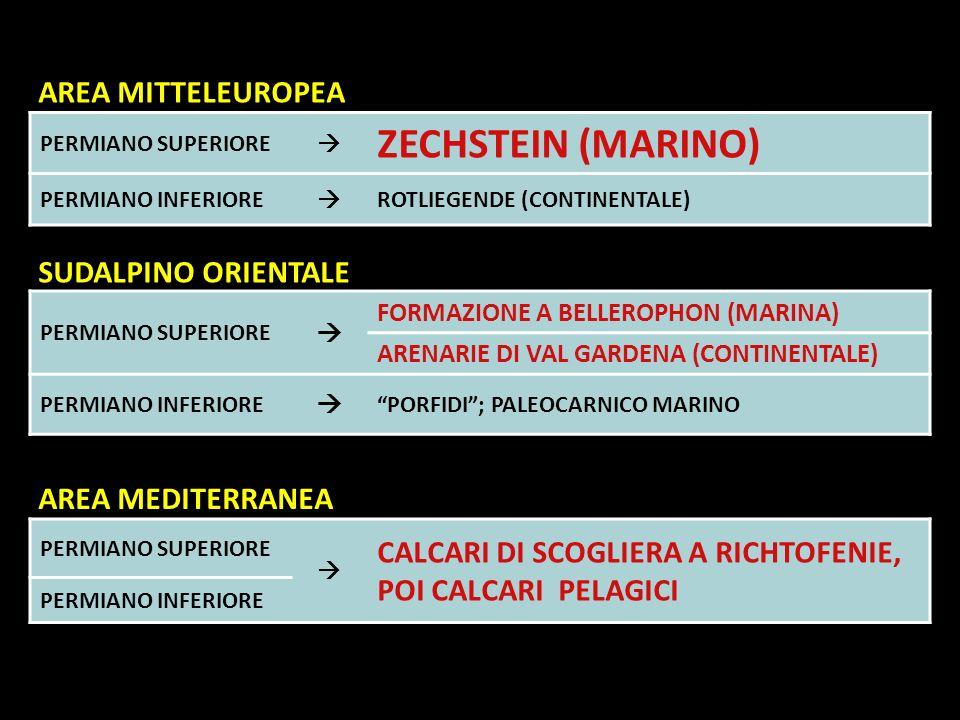 PERMIANO SUPERIORE ZECHSTEIN (MARINO) PERMIANO INFERIORE ROTLIEGENDE (CONTINENTALE) PERMIANO SUPERIORE FORMAZIONE A BELLEROPHON (MARINA) ARENARIE DI V