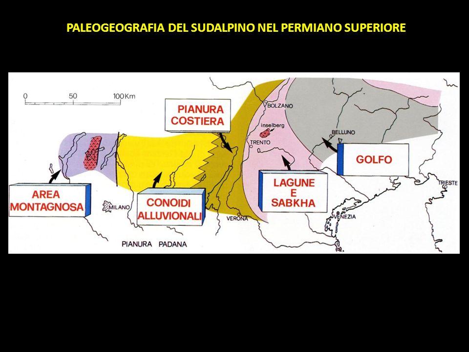 PALEOGEOGRAFIA DEL SUDALPINO NEL PERMIANO SUPERIORE