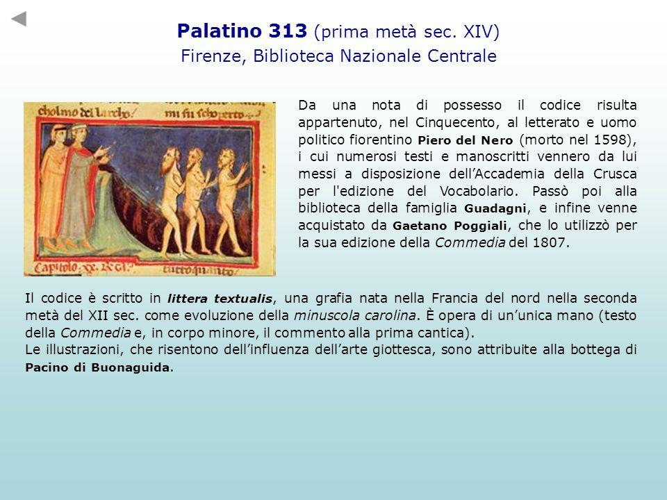 Palatino 313 (prima metà sec. XIV) Firenze, Biblioteca Nazionale Centrale Da una nota di possesso il codice risulta appartenuto, nel Cinquecento, al l